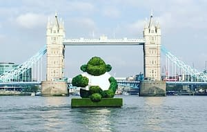 pg tips green tea monkey tower bridge